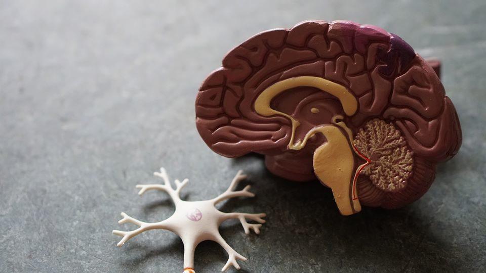 Slēptā slimība - veģetatīvā distonija