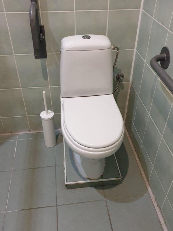 Tualetes poda birste, balta, WC